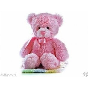 "12"" Yummy Pink Cuddly Teddy Bear"